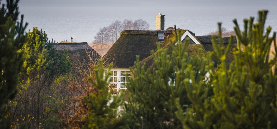 Achterwasser Loddin, Usedom, Blick aus Wohnung 8